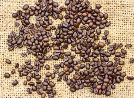 coffeetree: Fresh coffee beans on wood  Stock Photo