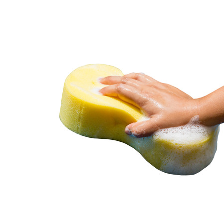 hand holding a cleaning sponge isolated on a white background photo
