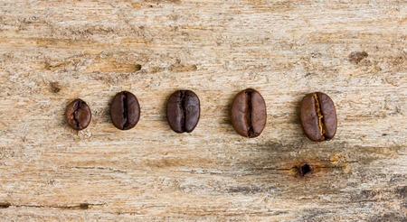 Coffee beans on wood background photo