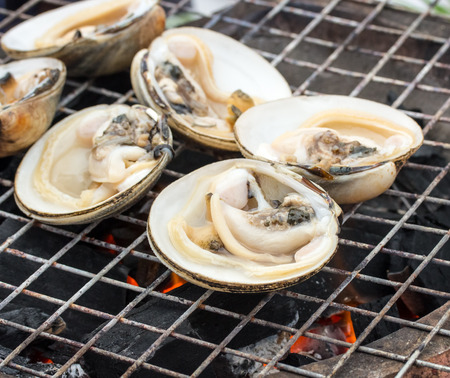 ostracean: many fresh oyster on fire. Stock Photo