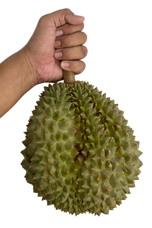 Hand is holding a durian on white photo