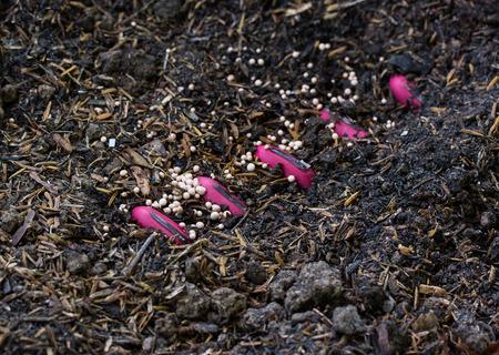 fertilizer: Fertilizer, Soil,giving plant fertilizer on ground