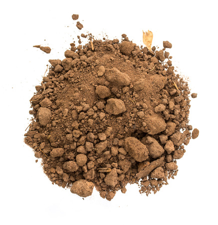 pile dirt of soil land on white background