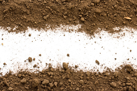 soil: Dirty earth on white background. Natural soil texture Stock Photo