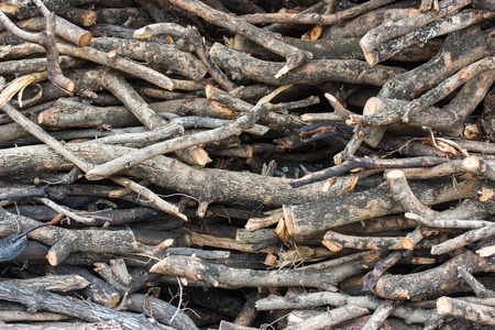 pyre: closed up the woodpile