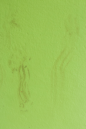 huellas de perro: Huellas de perro en el suelo verde Foto de archivo