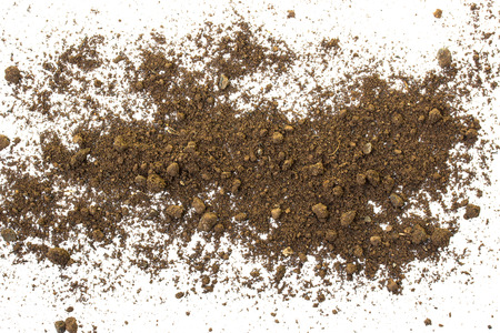 soil texture: Dirty earth on white background. Natural soil texture Stock Photo
