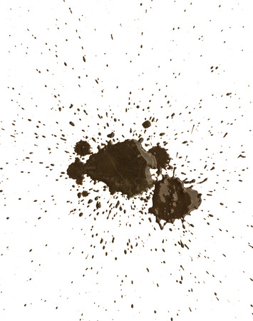 studioshot: Mud splat pattern isolated on a white background. Stock Photo