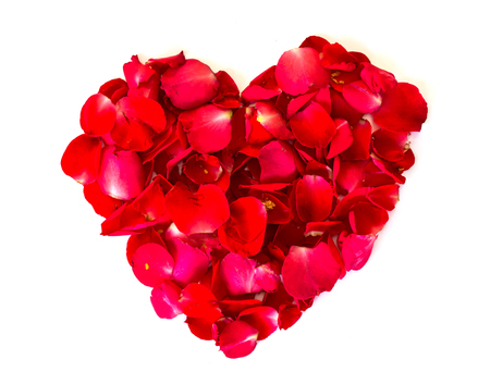 red rose petals: heart of red rose petals . valentine`s card with heart on the white background