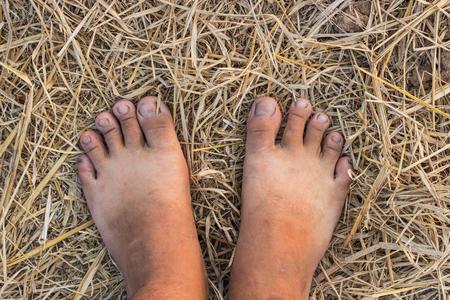 huella pie: Descalzo sobre la paja