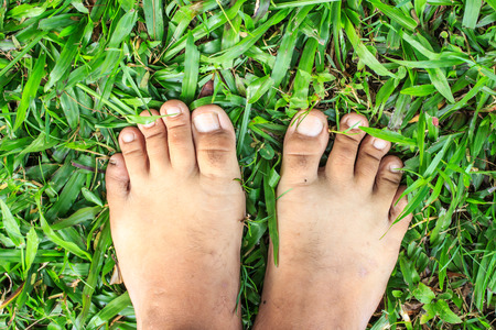 owning: Foot over green grass.top view