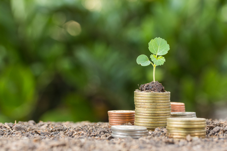 Stacked coins placed on the soil and seedling on top. Reklamní fotografie - 73679526