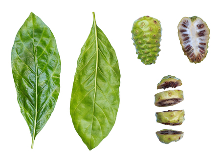 Nonifruit ,Noni leaf ,Noni sliced on white background