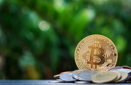 Bitcoin and pile of money on wooden table and nature background.Bitcoin as most important cryptocurrenc