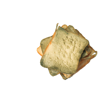 Moldy sliced bread on white background