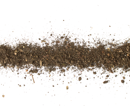 Dirty earth on white background. Natural soil texture Standard-Bild - 121324890