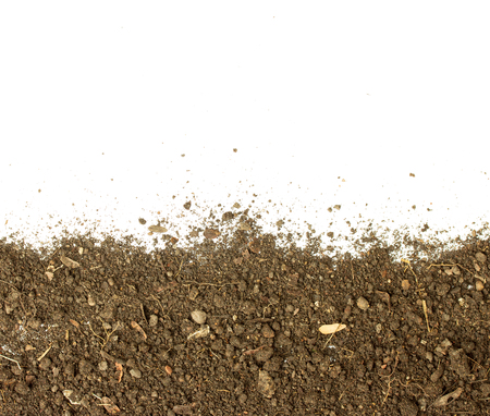 Dirty earth on white background. Natural soil texture Standard-Bild - 121323655