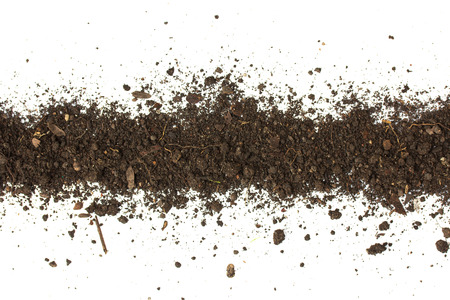 Dirty earth on white background. Natural soil texture Standard-Bild - 121323658