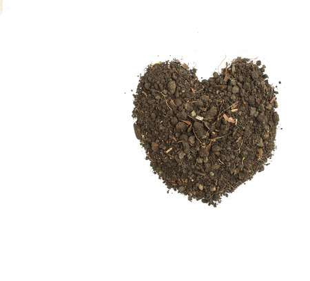 Dirty earth on white background. Natural soil texture Standard-Bild - 121323662