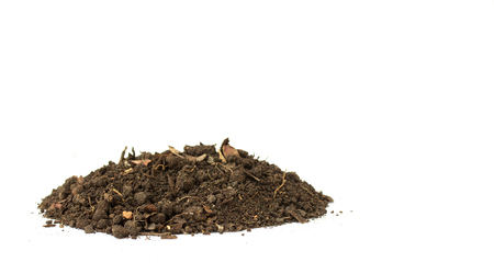 Dirty earth on white background. Natural soil texture Standard-Bild - 121323664