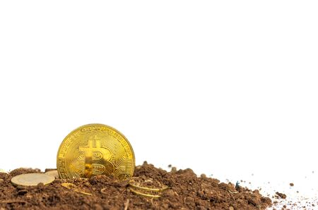 Gold coins or bitcoin on the soil Virtual money on a brown background Future investment concept 写真素材