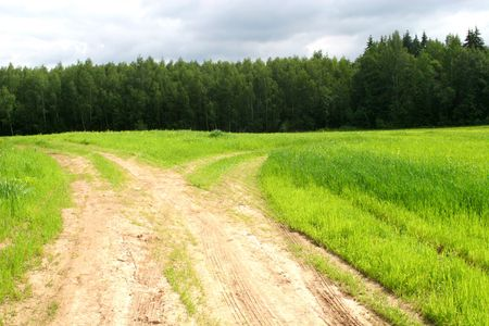 Rural landscape with green grass, road junction and forest