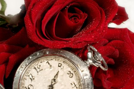 Beautiful red rose with drops of water and antique pocket watch photo