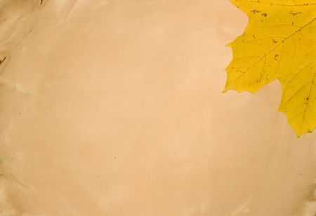 Yellow autumn leaf on old paper (as an abstract background, with empty space for your text) Stock Photo - 5600895