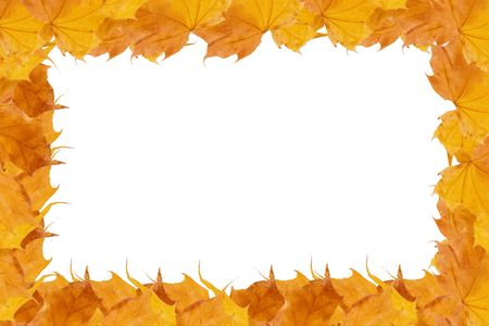 Frame made of rows of yellow autumn maple leaves (with empty space for your text) Stock Photo - 5645206