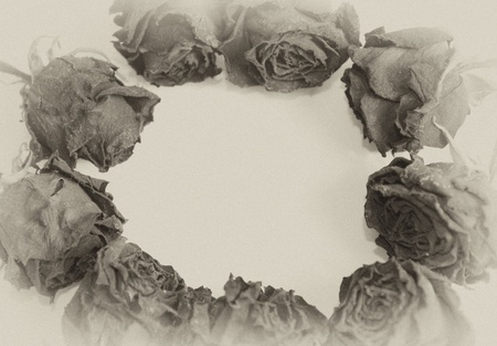 Dry roses forming a frame, with empty space for your text (sepia, vintage style) photo