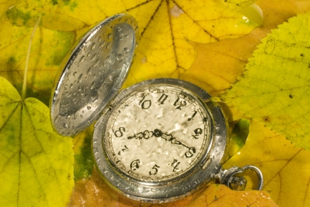 timekeeping: Antique watch with raindrops on the face against the background of autumn leaves