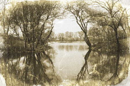 quietness: Beautiful landscape with a pond and trees vintage style