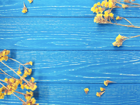 Dry yellow flowers forming a frame on a bright blue wooden background (with copy space in the center for your text), retro style