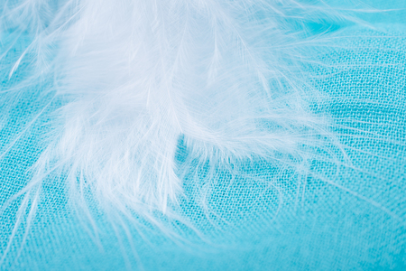 Soft focus white feather on bright turquoise fabric as an abstract fairy-like background (shallow DOF, selective focus) Stok Fotoğraf