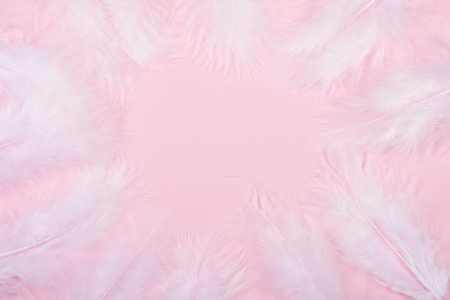 Fluffy white feathers forming a frame on a pastel pink background (as an abstract soft and gentle background), copy space in the center for your text Imagens