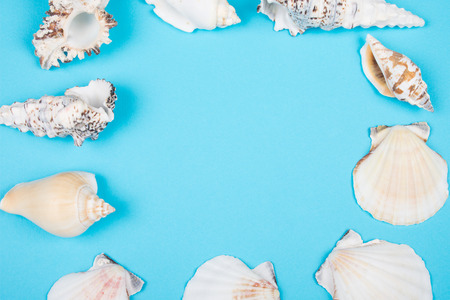 Collection of seashells forming a frame on a pastel blue background (top view, copy space in the center for your text) Stock Photo