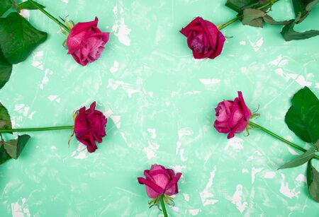 Beautiful pink and red roses forming a circle on a marble background of neo mint color (with copy space for your text), top view Standard-Bild - 136412172