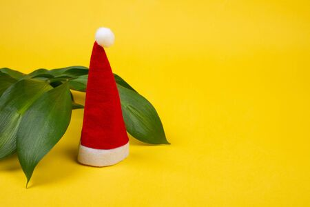 Small Santa hat and tropical leaves on the bright yellow background as the tropical Christmas concept (copy space on the right for your text)