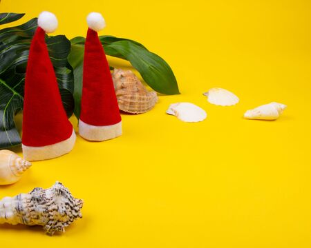 Two small Santa hats, tropical leaves and seashells on the bright yellow background as the tropical Christmas concept (copy space on the right)