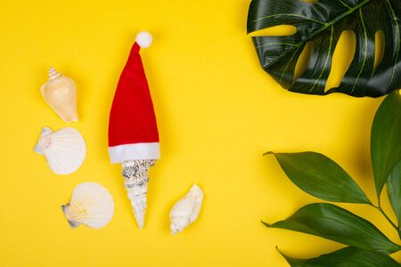 Seashell wearing a Santa hat, seashells and tropical leaves on the bright yellow background as the tropical Christmas concept Standard-Bild