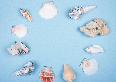 Collection of seashells forming a frame on a light blue background (top view, copy space in the center for your text) Standard-Bild