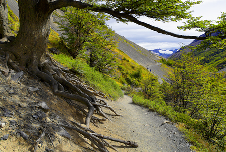 Trail along mountainside in Torres del Paine, Chile Patagonia. Stock Photo