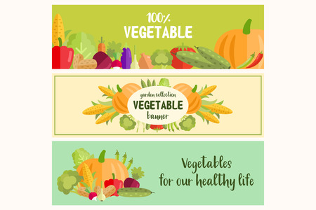 Set of flat vector vegetables banners for any use
