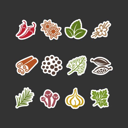 Set of flat vector spices in sticker style .12 different spices over background. Ilustração