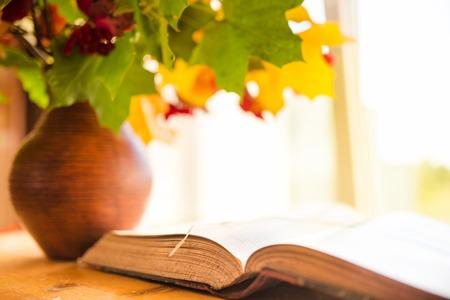 hojas antiguas: Libros antiguos. Libro abierto viejo en la mesa. Hojas de oto�o en una jarra de barro borrosa en el fondo. Foto de archivo