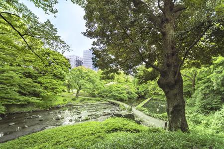 Landscape of the Koishikawa Korakuen Garden in Tokyo with the small Togetsu Bridge. Stock Photo