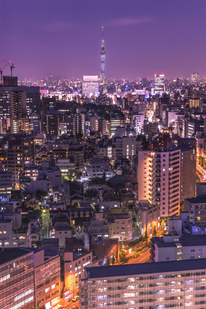 Aerial night view of the district of Korakuen in Tokyo with the skytree tower in background. 에디토리얼