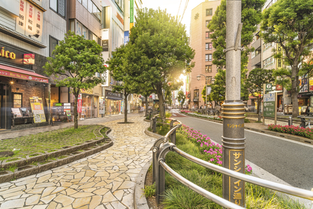 TOKYO, JAPAN - AUGUST 21, 2018: Sunshine Street on the east exit of Ikebukuro in Tokyo.The sidewalk curves emphasized by the blocks embedded with greasy step decorate moss stone flowers.? ? ? ? ? ? ? ? ? ? ? ? ? ? ? ? ? ? ? ? ? ? ? ? ? ? ? ? ? ? ?? ? ?? ?
