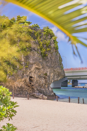palm tree on the sandy beach Naminoue topped by a huge rock with a Shinto Shrine at the top of a cliff and a highway passing in Naha City in Okinawa Prefecture, Japan.
