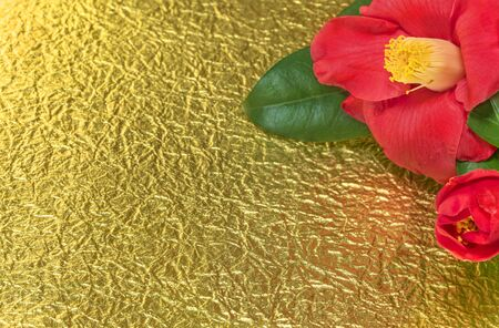 A Japanese greeting card with a Tsubaki flower also called the winter rose on a golden crumpled paper background.